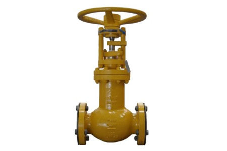 Bellows Seal Globe Isolating valves